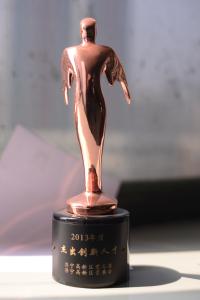 Winner of 2013 Technology Innovation Award
