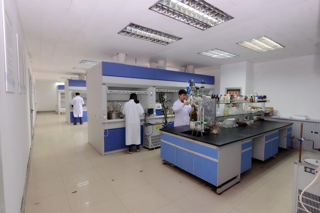 IMG_4844-lab 3